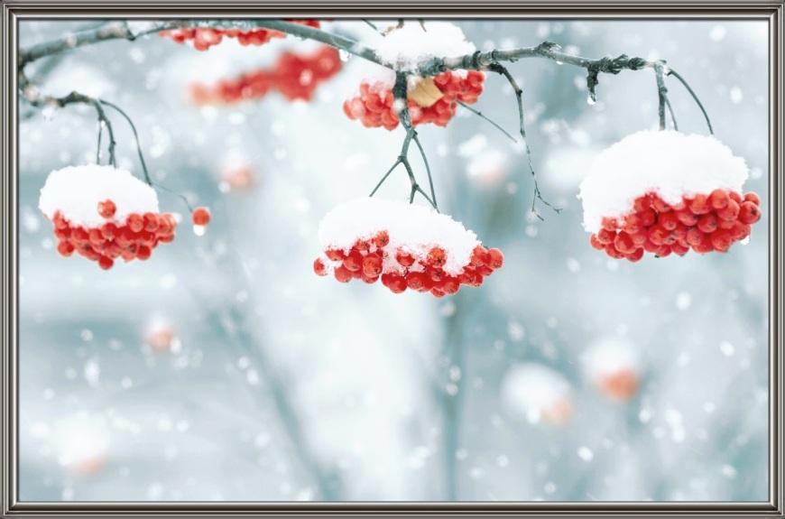 la terza neve...